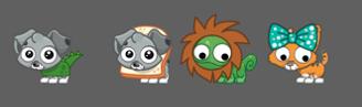 New pet costumes