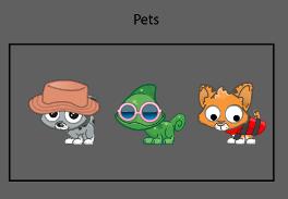 New Pet Items!
