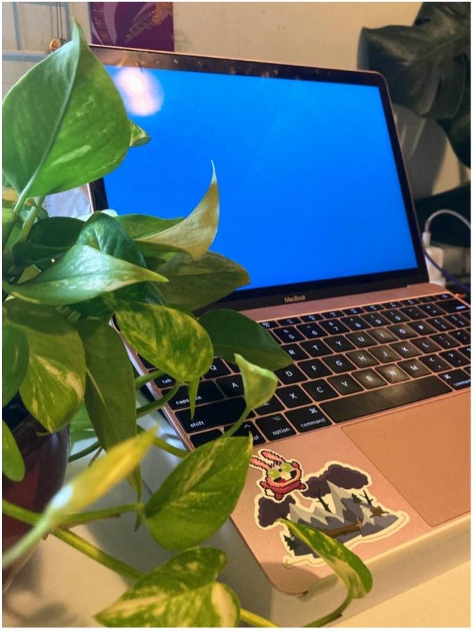 Poptropica stickers on laptop